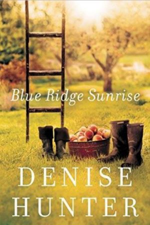 Romance novel 'Blue Ridge Sunrise' by Denise Hunter